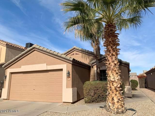 10850 E Carol Avenue, Mesa, AZ 85208 (MLS #6181757) :: Nate Martinez Team