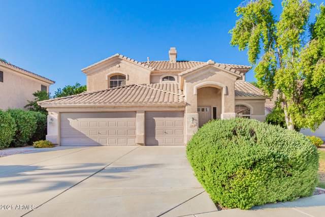 528 E Stottler Drive, Gilbert, AZ 85296 (MLS #6188939) :: Elite Home Advisors