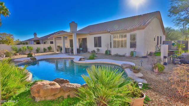 17732 W Summit Drive, Goodyear, AZ 85338 (MLS #6189563) :: Yost Realty Group at RE/MAX Casa Grande