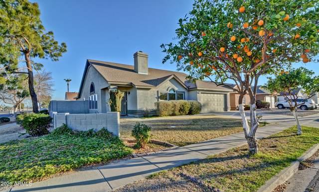 7858 W Peppertree Lane, Glendale, AZ 85303 (MLS #6196599) :: Yost Realty Group at RE/MAX Casa Grande