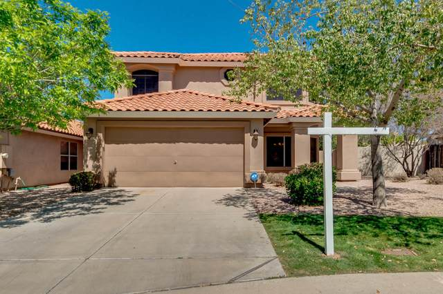 6650 E Saddleback Street, Mesa, AZ 85215 (MLS #6212435) :: The Luna Team