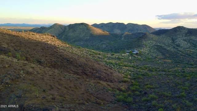 50XX E Desert Hills Drive, Cave Creek, AZ 85331 (MLS #6220012) :: The Ellens Team