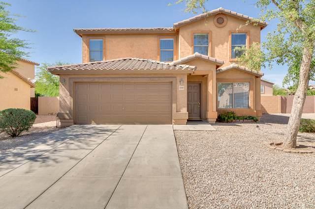 4340 E Whitehall Drive, San Tan Valley, AZ 85140 (MLS #6222417) :: Yost Realty Group at RE/MAX Casa Grande