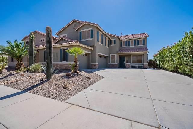 21568 N Backus Drive, Maricopa, AZ 85138 (MLS #6223974) :: Yost Realty Group at RE/MAX Casa Grande