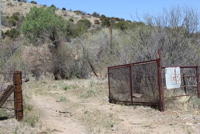 9600 S Six Shooter Canyon Road, Globe, AZ 85501 (MLS #6225566) :: Keller Williams Realty Phoenix