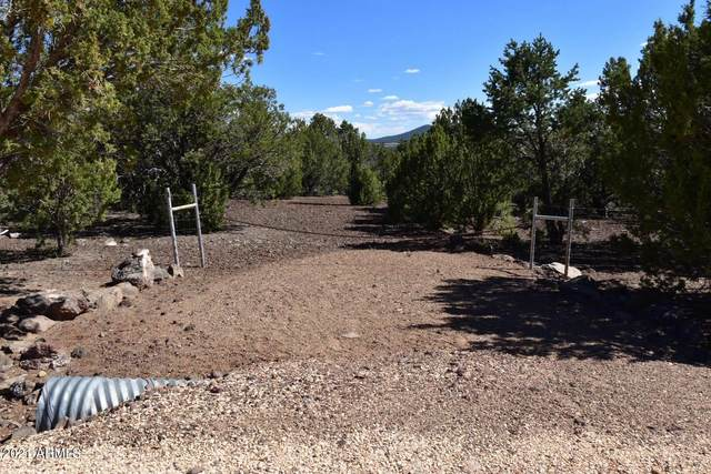 46 County Road 8140, Vernon, AZ 85940 (MLS #6228192) :: Dave Fernandez Team | HomeSmart
