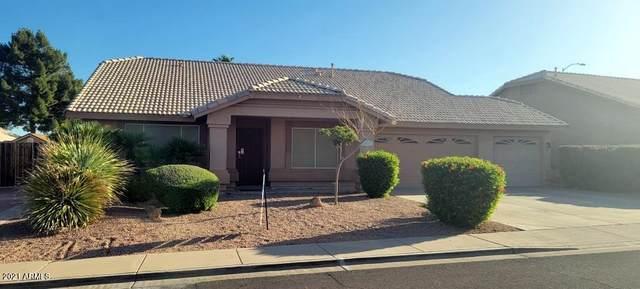 2415 N Saffron, Mesa, AZ 85215 (#6228780) :: Long Realty Company