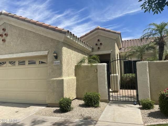 8466 E Pampa Avenue, Mesa, AZ 85212 (MLS #6229478) :: neXGen Real Estate