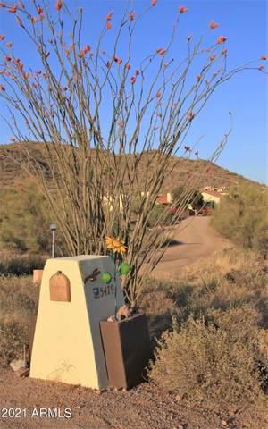 5479 S Kings Ranch Road, Gold Canyon, AZ 85118 (MLS #6234733) :: Yost Realty Group at RE/MAX Casa Grande