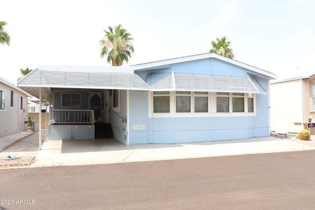 17200 W Bell Road #1541, Surprise, AZ 85374 (MLS #6238296) :: West Desert Group | HomeSmart