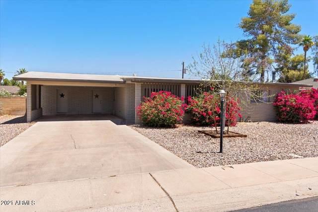 572 W Gail Drive, Chandler, AZ 85225 (MLS #6242978) :: Yost Realty Group at RE/MAX Casa Grande