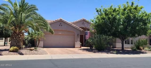4517 E Apricot Lane, Gilbert, AZ 85298 (MLS #6243235) :: Yost Realty Group at RE/MAX Casa Grande