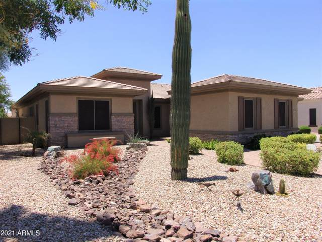 1343 E Ibis Street, Gilbert, AZ 85297 (MLS #6246582) :: Conway Real Estate