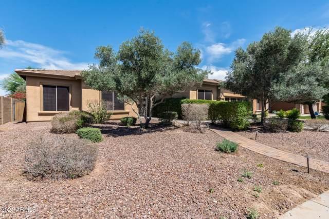 4747 N 150TH Avenue, Goodyear, AZ 85395 (MLS #6246586) :: Yost Realty Group at RE/MAX Casa Grande