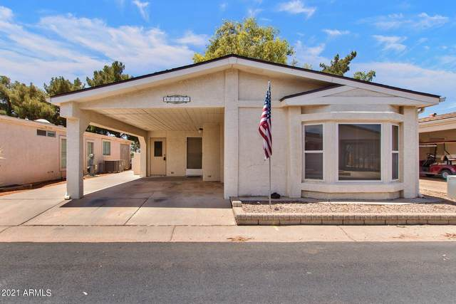 6332 S Oakmont Drive, Chandler, AZ 85249 (MLS #6247053) :: Nate Martinez Team