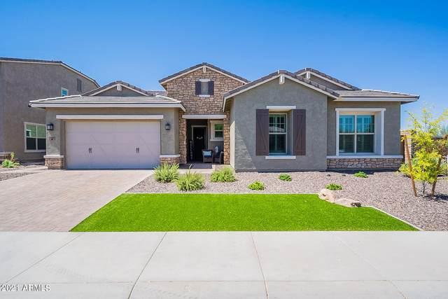 11883 W Morning Vista Drive, Peoria, AZ 85383 (MLS #6247523) :: Yost Realty Group at RE/MAX Casa Grande