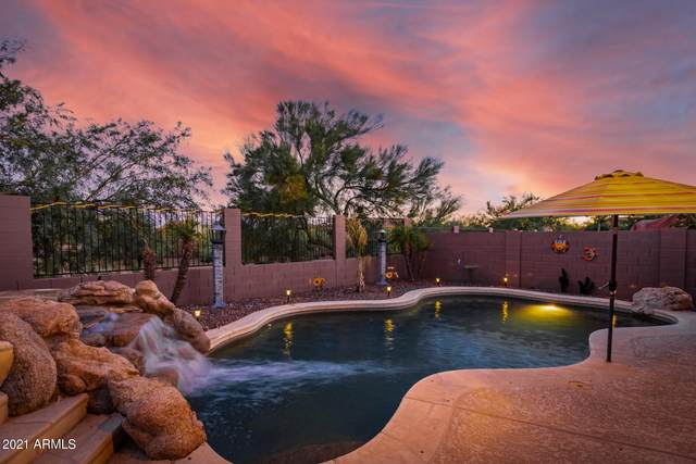 2329 W Blaylock Drive, Phoenix, AZ 85085 (MLS #6249307) :: Yost Realty Group at RE/MAX Casa Grande
