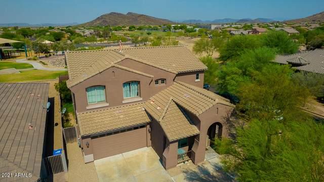 35434 N 31ST Drive, Phoenix, AZ 85086 (MLS #6250745) :: Yost Realty Group at RE/MAX Casa Grande