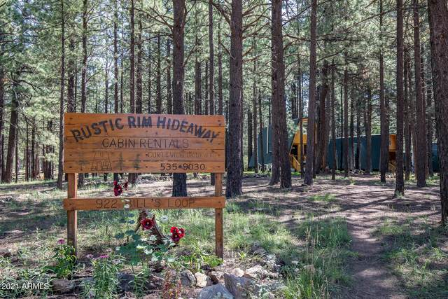 793 Bills Loop, Forest Lakes, AZ 85931 (MLS #6251410) :: Long Realty West Valley