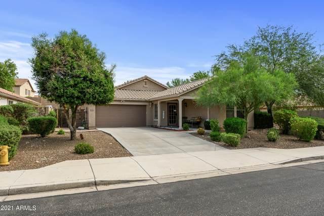 12784 W Desert Mirage Drive, Peoria, AZ 85383 (MLS #6251433) :: Yost Realty Group at RE/MAX Casa Grande