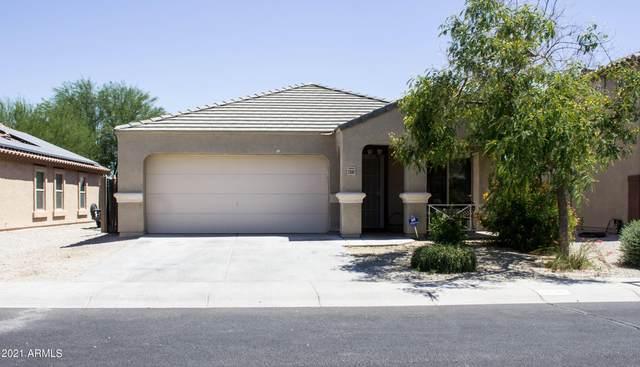 23587 W Romley Avenue, Buckeye, AZ 85326 (MLS #6252222) :: Conway Real Estate