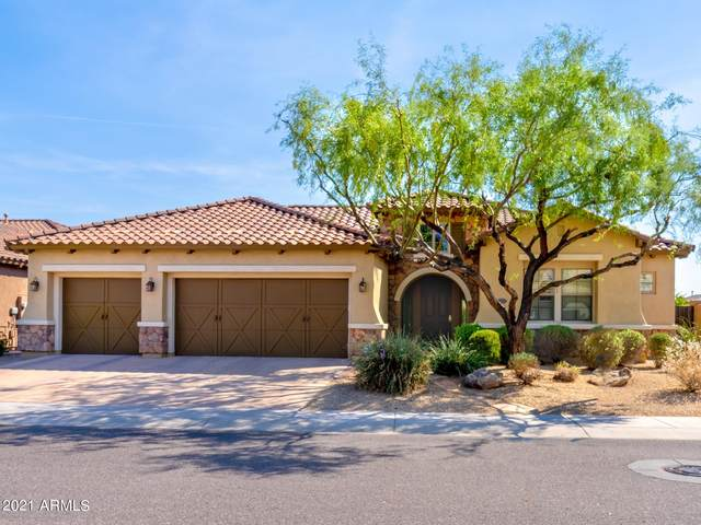 3933 E Patrick Lane, Phoenix, AZ 85050 (MLS #6255211) :: Yost Realty Group at RE/MAX Casa Grande