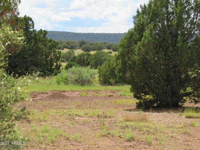 Show Low Pines Unit 8 Lots 76, 77 & 78, Concho, AZ 85924 (MLS #6255741) :: The Copa Team | The Maricopa Real Estate Company