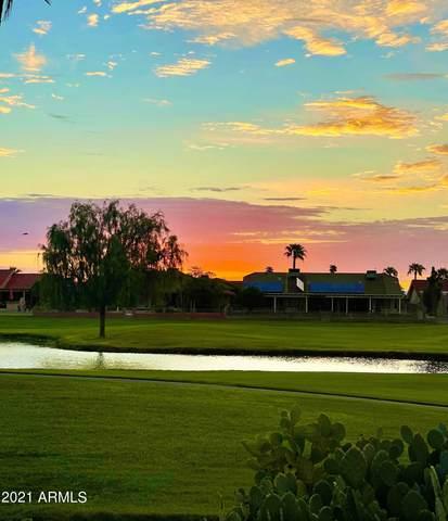 21203 N 124TH Drive, Sun City West, AZ 85375 (MLS #6256789) :: Elite Home Advisors