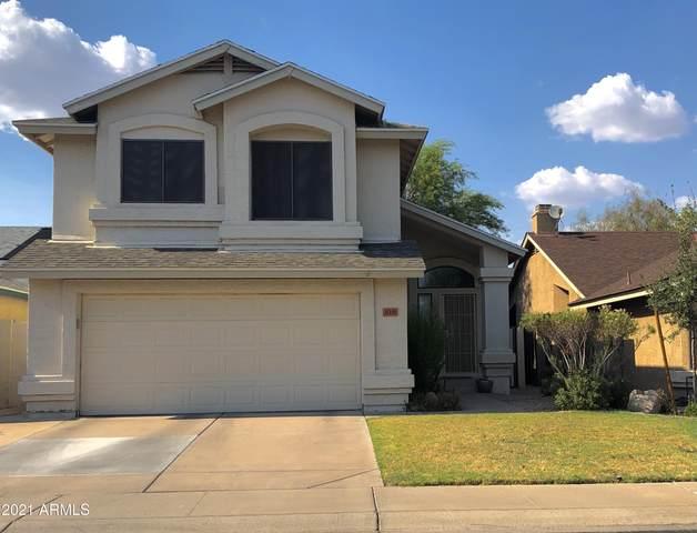 818 E Sack Drive, Phoenix, AZ 85024 (MLS #6257624) :: Yost Realty Group at RE/MAX Casa Grande