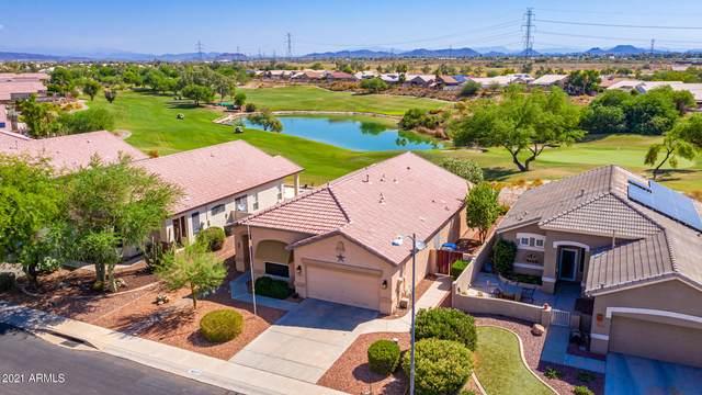 18277 N 116TH Drive, Surprise, AZ 85378 (MLS #6258933) :: Yost Realty Group at RE/MAX Casa Grande