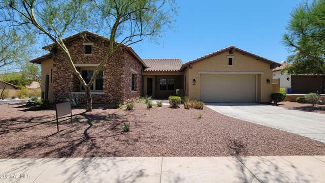21419 W Brittle Bush Lane, Buckeye, AZ 85396 (MLS #6259511) :: Elite Home Advisors