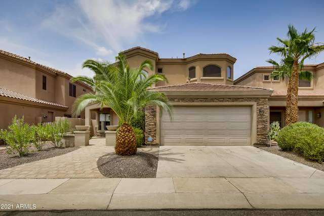 3320 E Briarwood Terrace, Phoenix, AZ 85048 (MLS #6263799) :: Yost Realty Group at RE/MAX Casa Grande