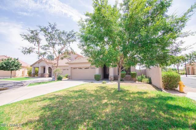 6851 S 27TH Place, Phoenix, AZ 85042 (MLS #6267694) :: Yost Realty Group at RE/MAX Casa Grande