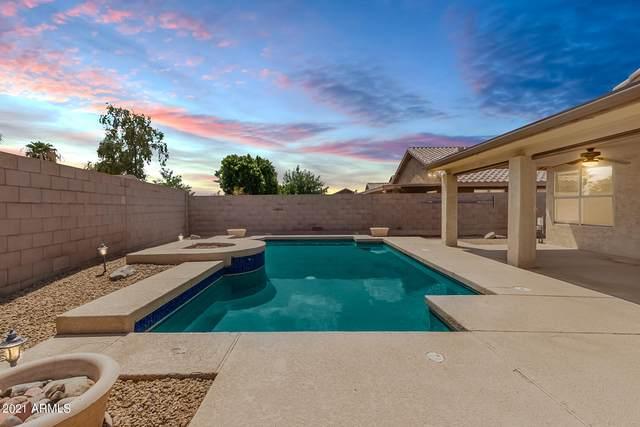 8719 W Wedgewood Drive, Peoria, AZ 85382 (MLS #6268560) :: Synergy Real Estate Partners