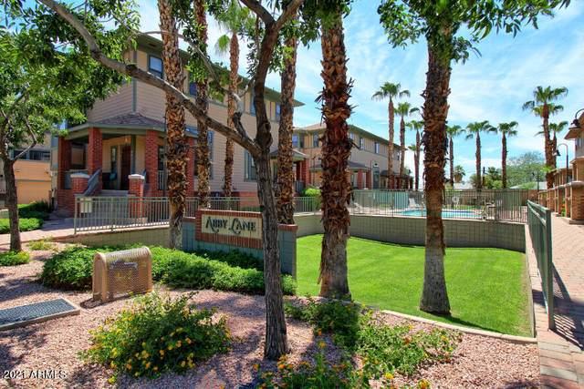 710 S Beck Avenue, Tempe, AZ 85281 (MLS #6271291) :: Yost Realty Group at RE/MAX Casa Grande