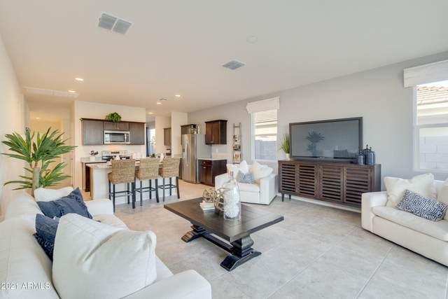 24526 N Alfalfa Drive, Florence, AZ 85132 (MLS #6279441) :: Elite Home Advisors