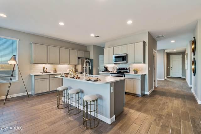 9352 E Grapefruit Drive, Florence, AZ 85132 (MLS #6279492) :: Elite Home Advisors