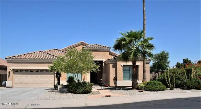 4992 E La Costa Drive, Chandler, AZ 85249 (MLS #6283557) :: Elite Home Advisors