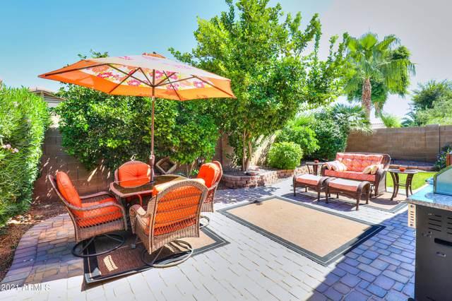 43806 W Bedford Drive, Maricopa, AZ 85138 (MLS #6284518) :: Executive Realty Advisors