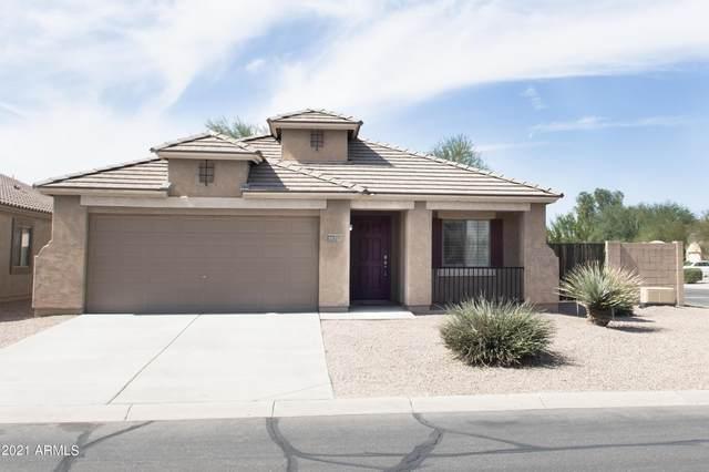 19252 N Meghan Drive, Maricopa, AZ 85138 (MLS #6284672) :: Elite Home Advisors