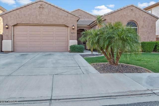 6896 S Sapphire Way, Chandler, AZ 85249 (MLS #6285559) :: Yost Realty Group at RE/MAX Casa Grande