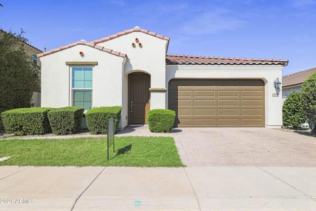 5316 S Cobalt, Mesa, AZ 85212 (MLS #6287812) :: Elite Home Advisors