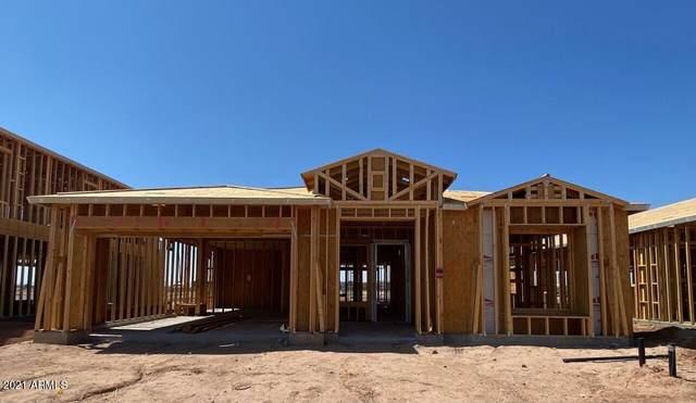 4816 S Pluto, Mesa, AZ 85212 (MLS #6291330) :: Yost Realty Group at RE/MAX Casa Grande