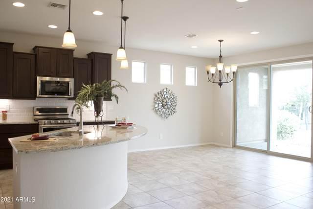 4195 N Presidio Drive, Florence, AZ 85132 (MLS #6297296) :: Elite Home Advisors