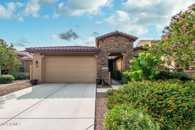 22204 N 182ND Lane, Surprise, AZ 85387 (MLS #6299500) :: Elite Home Advisors