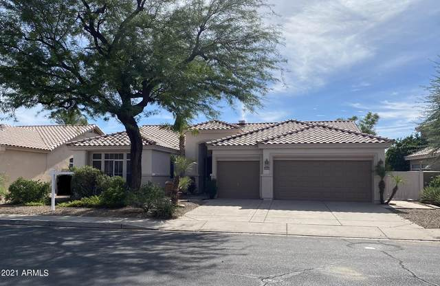 22733 N 73RD Drive, Glendale, AZ 85310 (#6301871) :: AZ Power Team