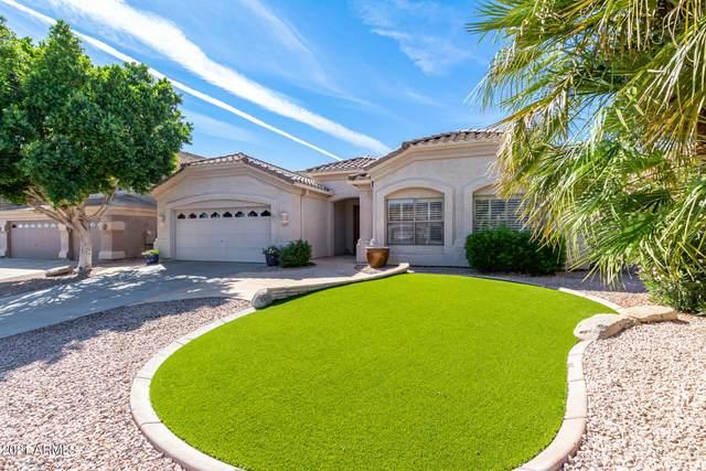 16844 S 12TH Way, Phoenix, AZ 85048 (MLS #6302682) :: Elite Home Advisors