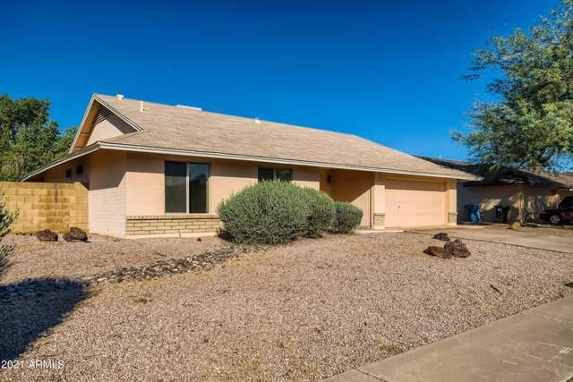 6610 S Marilyn Ann Drive, Tempe, AZ 85283 (MLS #6303803) :: Elite Home Advisors