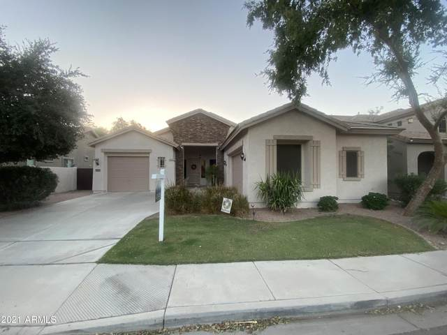 2600 S Dragoon Drive, Chandler, AZ 85286 (MLS #6305034) :: Elite Home Advisors