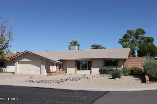 3517 S Juniper Street, Tempe, AZ 85282 (MLS #6305069) :: Zolin Group